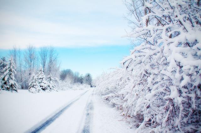 road-584387_640
