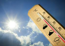 images canicule